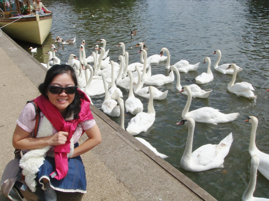 Both Julia and the swans seem to love this avon